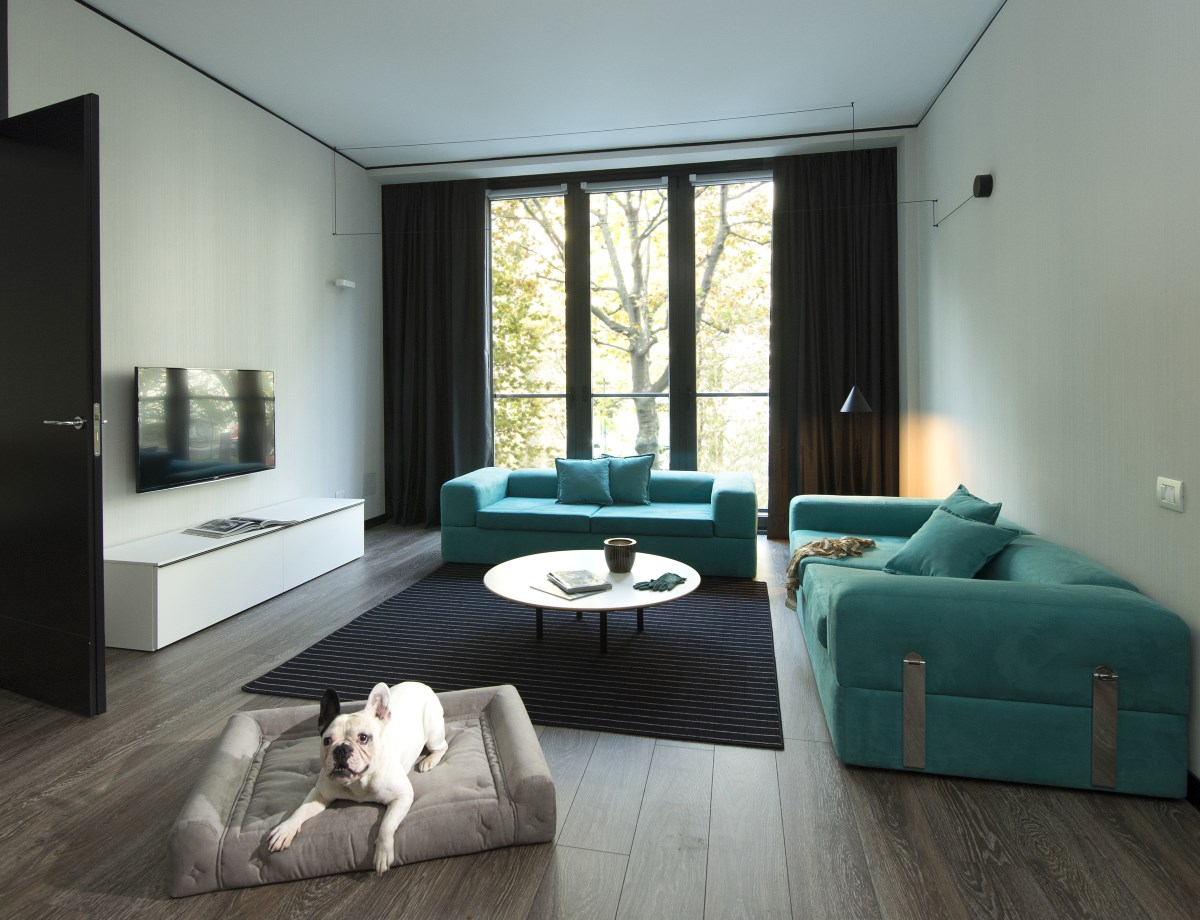 Hotel pet friendly a Torino