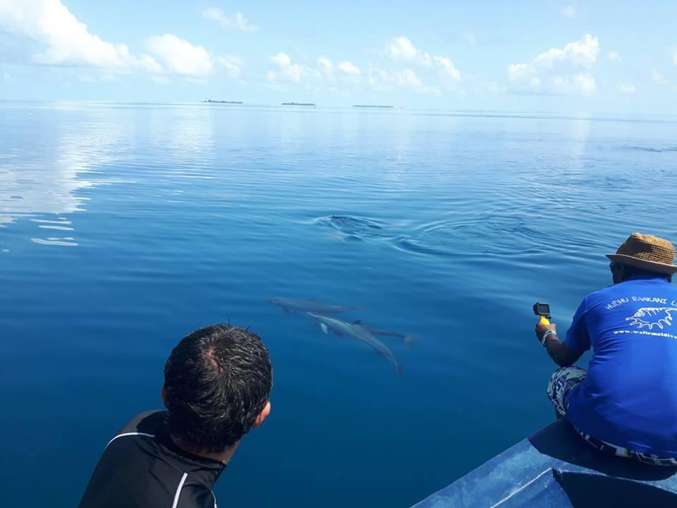 Vacanza alle maldive con i bambini - Cosa fare quando non riesci ad andare in bagno ...