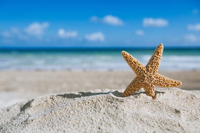 Offerte vacanze al mare con i bambini its4kids for Vacanze con bambini